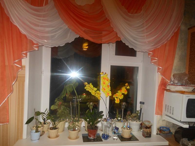 shtory-dlya-kuhni-foto (116)