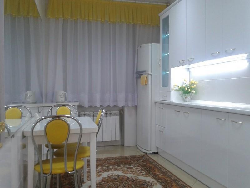 shtory-dlya-kuhni-foto (19)
