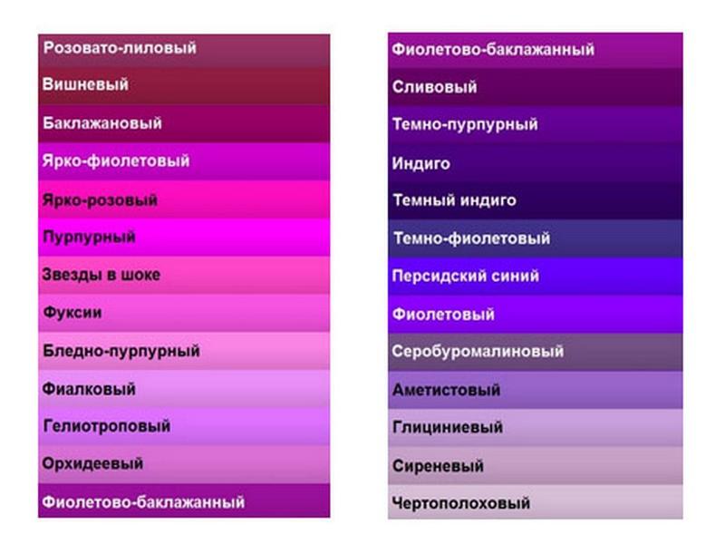 Цвет сиреневый и фиолетовый
