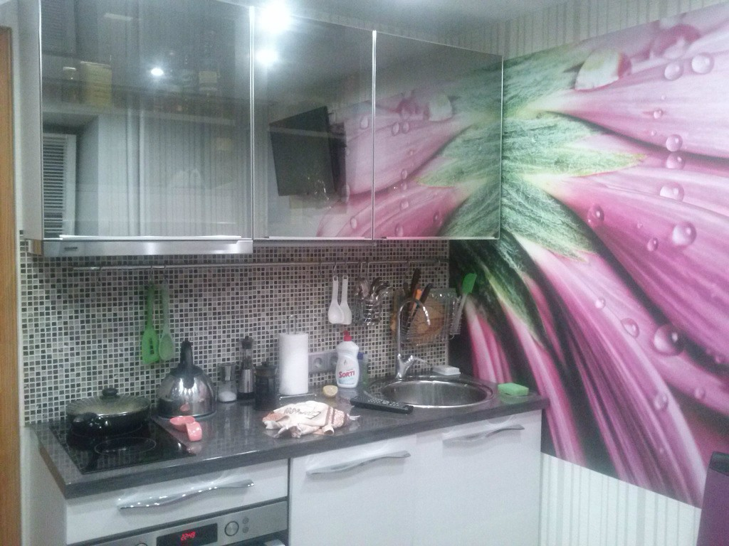 Кухня малютка: особенности дизайна (реальные фото)
